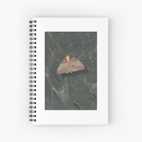 Rosy Maple Moth Spiral Notebook