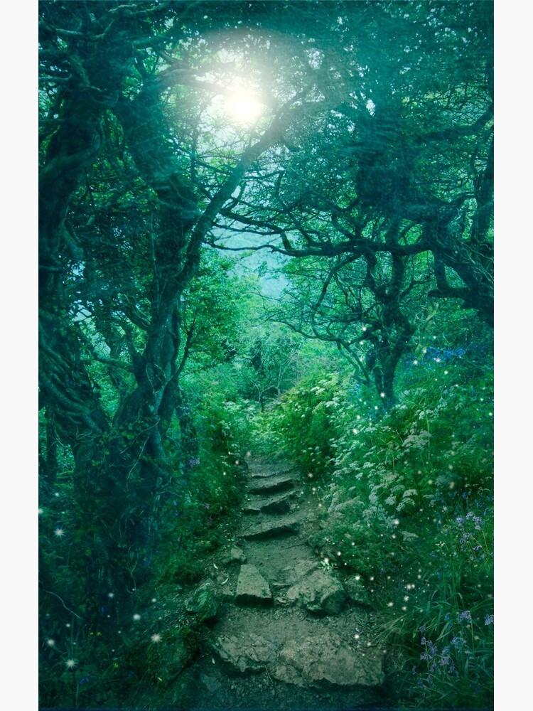 The Secret Path by AngelaBarnett