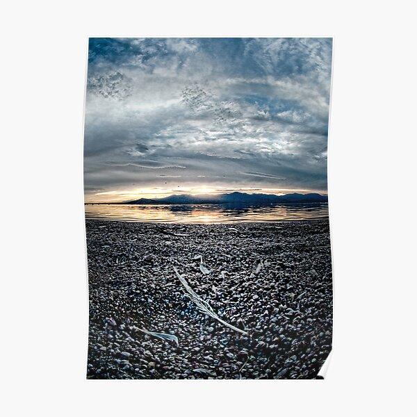 Feather on the Shore: Salton sea Poster