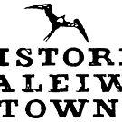Historic Haleiwa Town by northshoresign