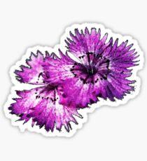 Dianthus (T-Shirt), dark, watercolor effect Sticker