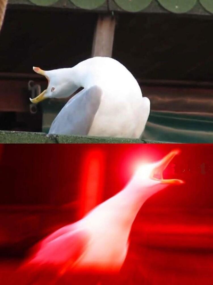 """Inhaling Seagull Meme"" Mini Skirt by FlashmanBiscuit ..."