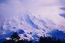 Lavender Rainier by Tori Snow
