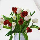 Tulips by Lynne Morris