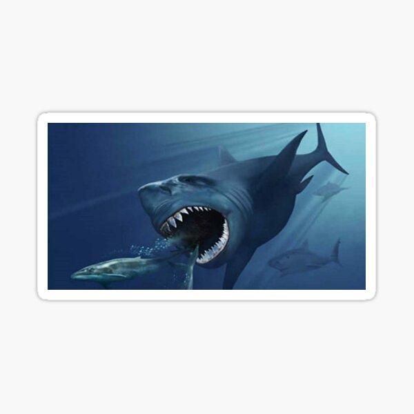 #Underwater #Shark #Swimming #Teeth Fish Water Sea Whale Sticker