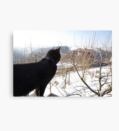 dreaming of a winter wonderland Canvas Print