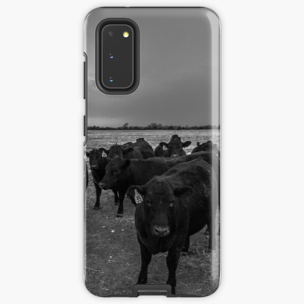 Hanging Out - Angus Cattle Hang Out with Photographer as Storm Brews in Kansas Samsung Galaxy Tough Case