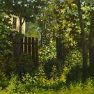 abandoned garden by edisandu