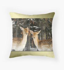 Aren't We Beautiful?! :) Throw Pillow