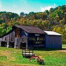 Tobacco Barn, Wirt County West Virginia by Bryan D. Spellman