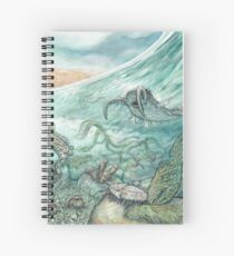 The Cambrian Spiral Notebook