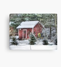 Little Red Garden Shed Canvas Print