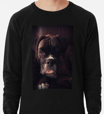 Porträt eines weiblichen Boxers - Boxer Dogs Series Leichtes Sweatshirt