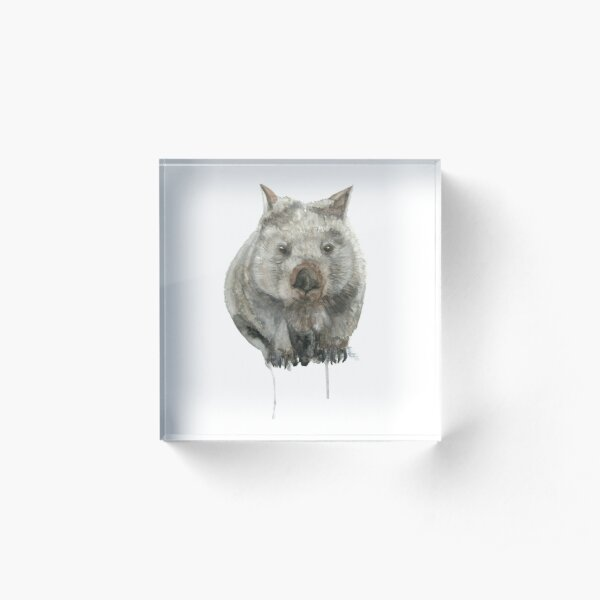 Common Wombat Acrylic Block