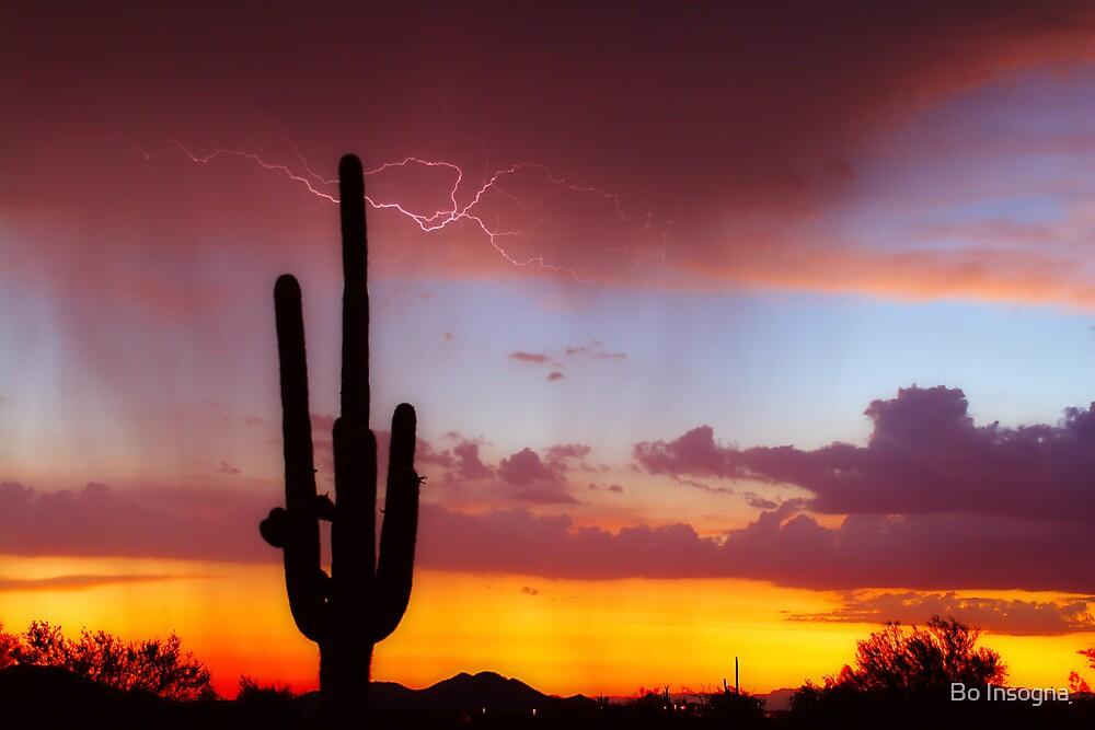 Arizona Sunset with Lightning Strike by Bo Insogna