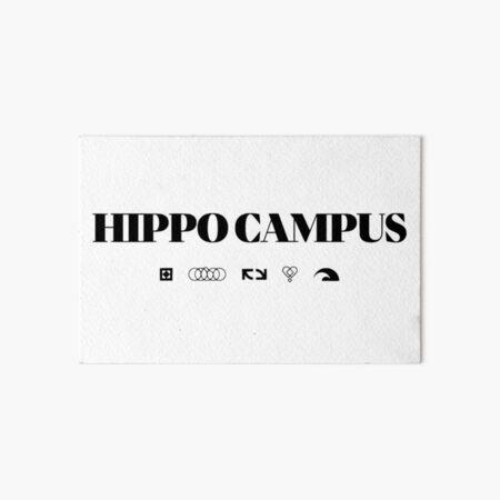 hippo campus Art Board Print