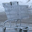 Shopping In The Ice by Linda Miller Gesualdo