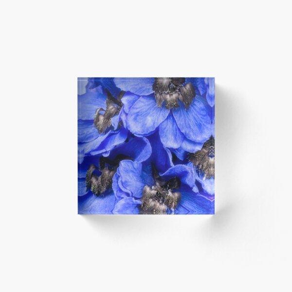 Love is blue Acrylic Block