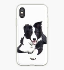 Border Collie on a white background iPhone Case