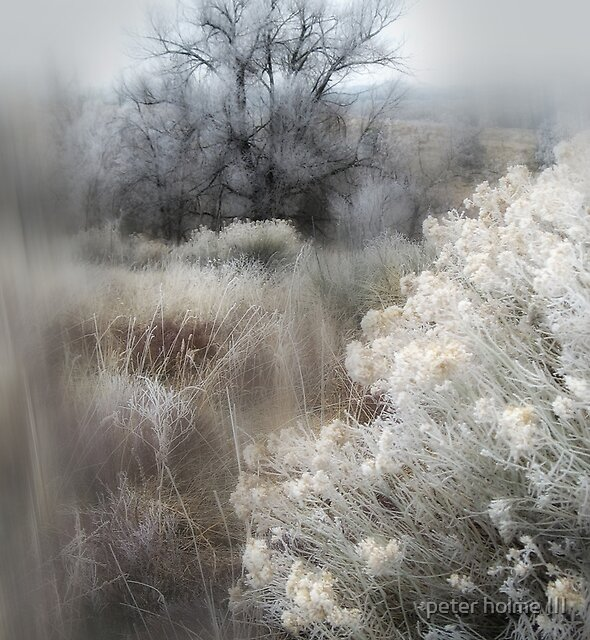 370 by peter holme III
