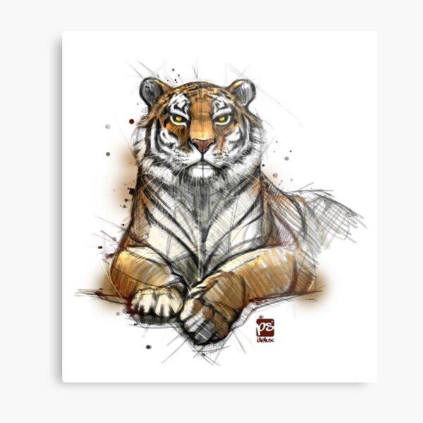 Tiger colored sketch Metal Print