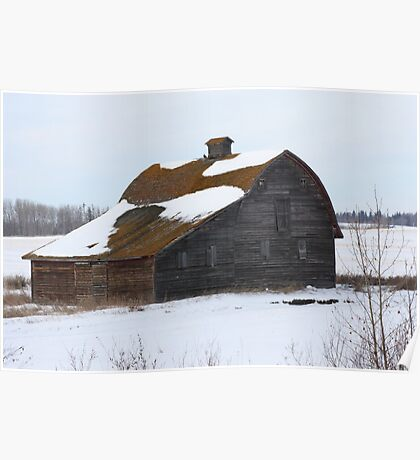 Lonely Prairie Barn   Poster
