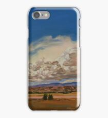 Side By Side iPhone Case/Skin