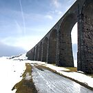 Riblehead Viaduct South by Mark Dobson