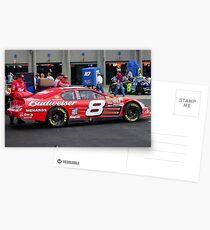 Dale Earnhardt Jr. NASCAR Budweiser Postcards
