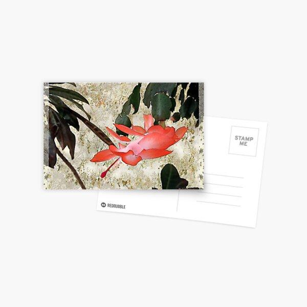 Penny Postcard Japonaise Postcard