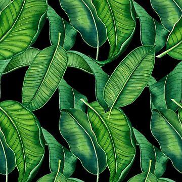 Palm Garden by eduardodoreni