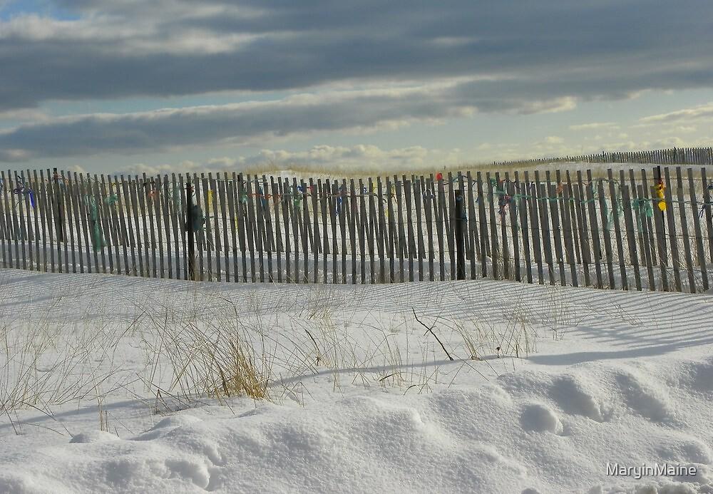 Beach Fence by MaryinMaine