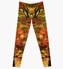 Colors Of Fall Leggings