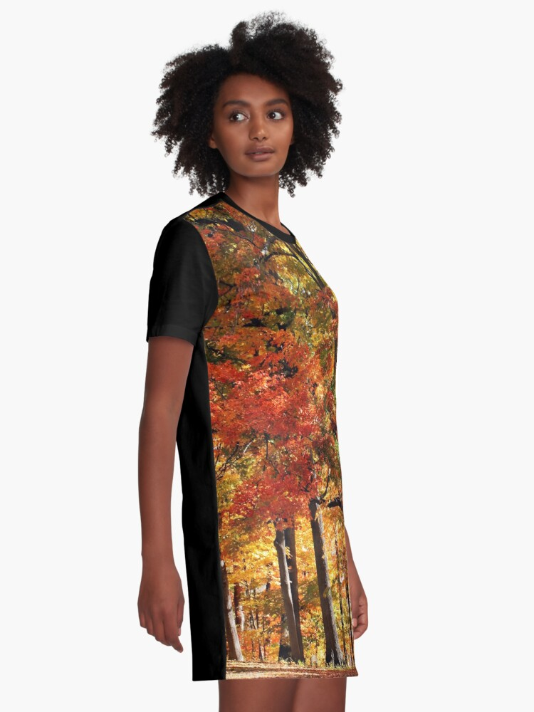 Alternate view of Colors Of Fall Graphic T-Shirt Dress