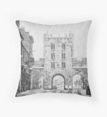 Another snowfall to defend against Throw Pillow