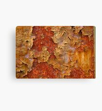 Over cooked Canvas Print