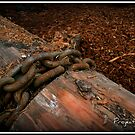 Chained to the log by Brett Wall