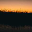 Sunset 21 by OLIVIA JOY STCLAIRE