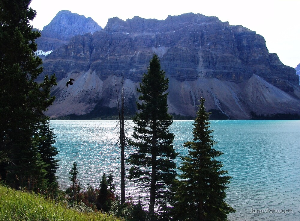 Bow Lake (2) by Jann Ashworth