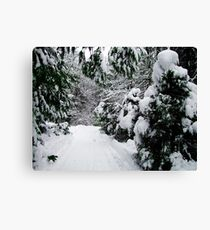 Breaking Trail Canvas Print