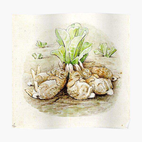 L'histoire des lapins flopsy - Beatrix Potter Poster