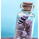 Beach in a Bottle by David Wilson