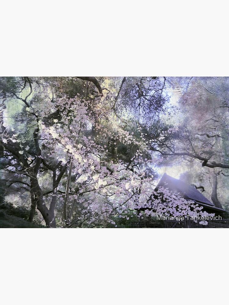 japanese garden by mariannat