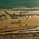 Cable beach camels by Colin White