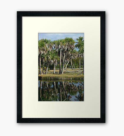 Palms by the Pond Framed Print