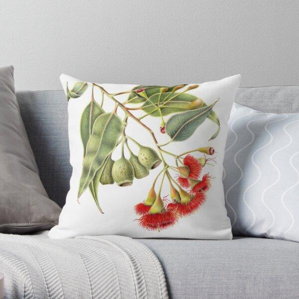 Corymbia ficifolia - Red Flowering Gum Throw Pillow