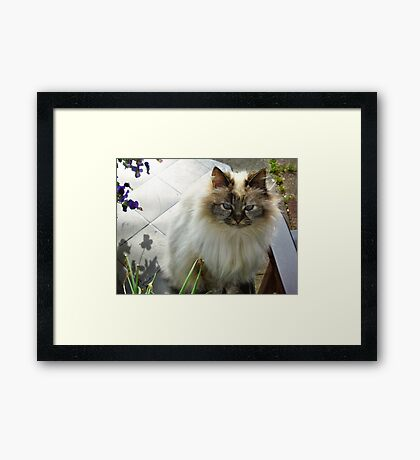Bye...  to a little Princess Framed Print