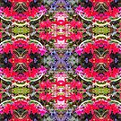 Red Flower Photo Collage by Julia Woodman