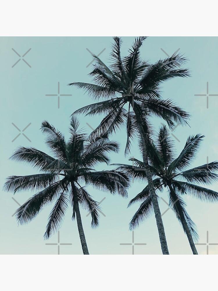 Blaue Himmel und tropische Palmen von AlexandraStr