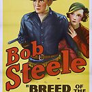 Vintage Hollywood Nostalgia Breed of the Border Film Movie Advertisement Poster by jnniepce